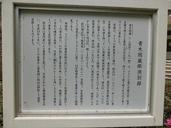 8.jpg